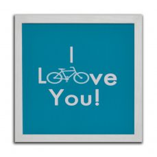 cuadro loove bici